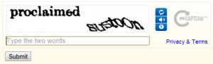 reCAPTCHA1